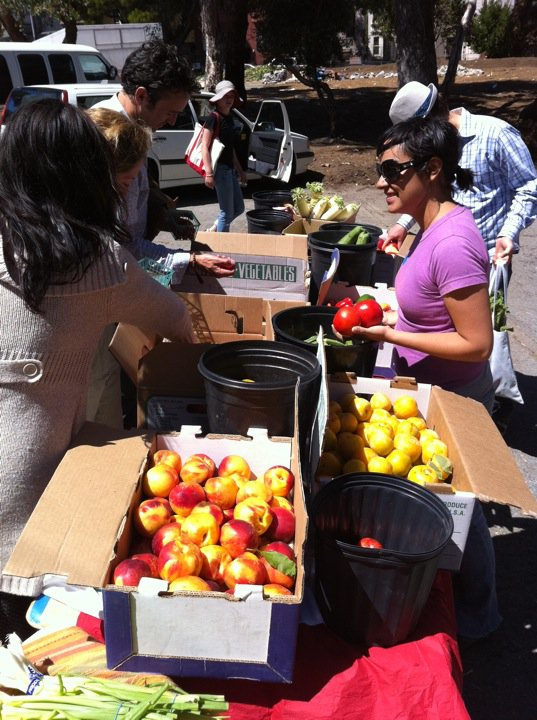 "A ""Fresh Produce Share-With-All"" at Hayes Valley Farm. Photo: Jenny Sherman"